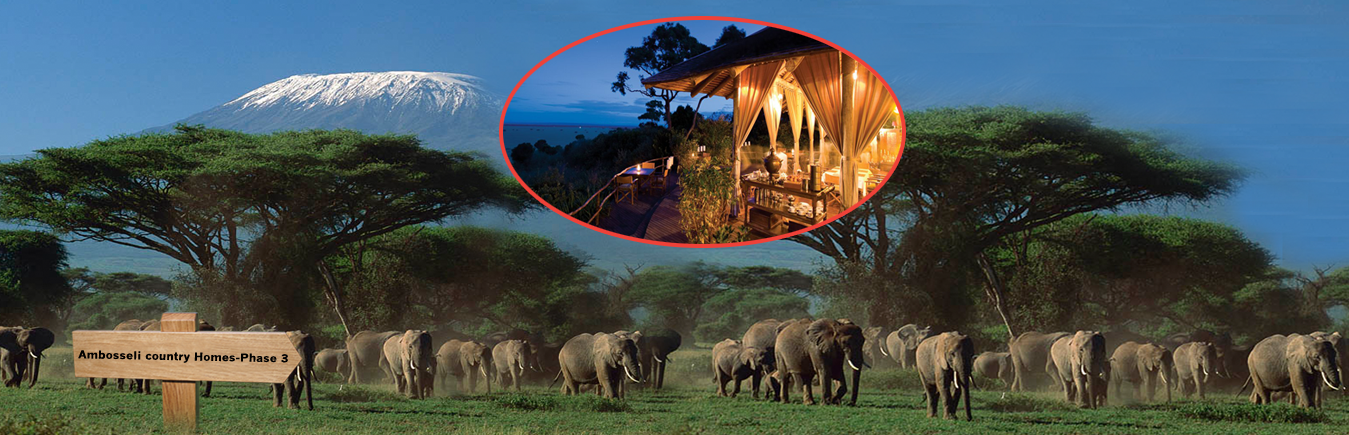 Amboseli country homes
